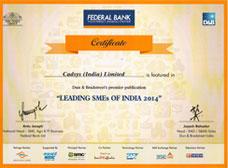 Cadsys_SME_Award1